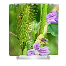 Shower Curtain featuring the photograph Natural Bouquet by Pedro Cardona
