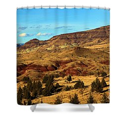 Natural Paint Shower Curtain by Adam Jewell