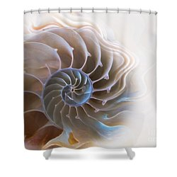 Natural Spiral Shower Curtain by Danuta Bennett