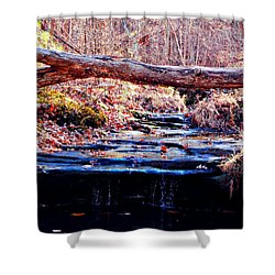 Shower Curtain featuring the photograph Natural Spring Beauty  by Peggy Franz