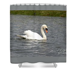 Animals A33 Shower Curtain