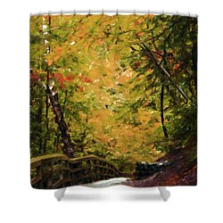 Shower Curtain featuring the photograph Nature In Oil  by Deniece Platt
