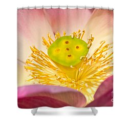 Shower Curtain featuring the photograph Nature by Luciano Mortula