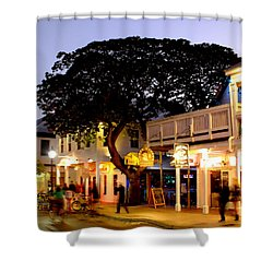 Nature Within The City Shower Curtain by Karen Wiles