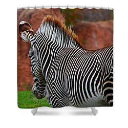 Nature's Barcode Shower Curtain by Davandra Cribbie
