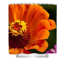 Natures Color  Shower Curtain by Dana Kern