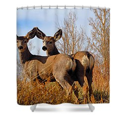 Nature's Gentle Beauties Shower Curtain by Lynn Bauer