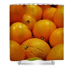 Navel Oranges Shower Curtain by Methune Hively
