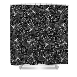Needed Sun Shower Curtain by Empty Wall