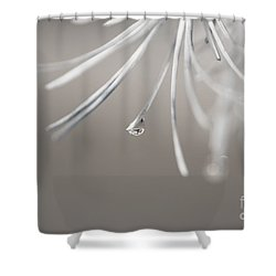 Neigerelle - 04-03b Shower Curtain by Variance Collections