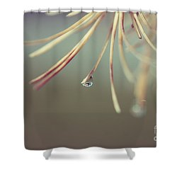 Neigerelle - 06b Shower Curtain by Variance Collections