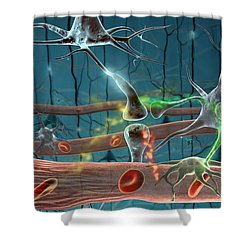 Neurons Shower Curtain by Science Source