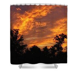 New Beginnings Shower Curtain by Shari Nees