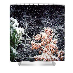 Night Snow 2 Shower Curtain by Sandi OReilly