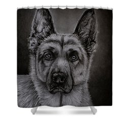 Noble - German Shepherd Dog  Shower Curtain