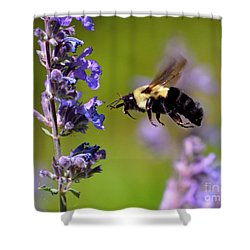 Non Stop Flight To Pollination Shower Curtain