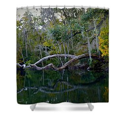 North Florida River Reflections Shower Curtain by Carla Parris