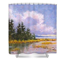 North Shore Shower Curtain by Richard De Wolfe