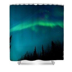 Northern Magic Shower Curtain by Priska Wettstein