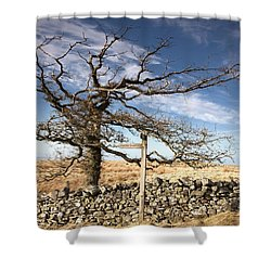 Northumberland, England A Leafless Tree Shower Curtain by John Short