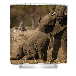 Nose Bump Shower Curtain