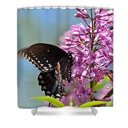 Nothing Says Spring Like Butterflies And Lilacs Shower Curtain