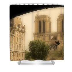 Notre Dame Cathedral Viewed Shower Curtain by John Sylvester