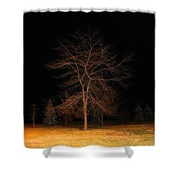 Shower Curtain featuring the photograph November Night by Milena Ilieva