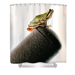 Now What? Shower Curtain by Rory Sagner