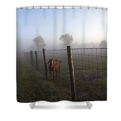 Nubian Goat Shower Curtain by Lynn Palmer