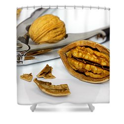 Nut Cracker Shower Curtain by Carlos Caetano