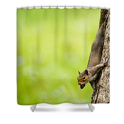 Nut Job Shower Curtain