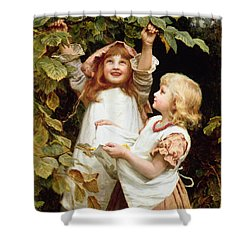 Nutting Shower Curtain by Frederick Morgan