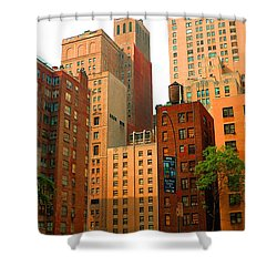 Nyc Buildings Shower Curtain