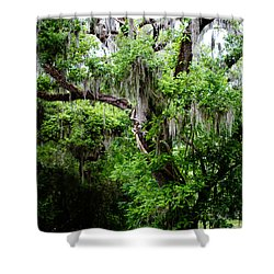 Oak And Moss Shower Curtain