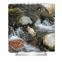 Oak Creek Shower Curtain by Lauri Novak