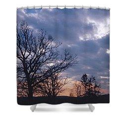 Oak In Sunset Shower Curtain