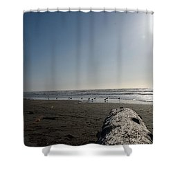 Ocean At Peace Shower Curtain