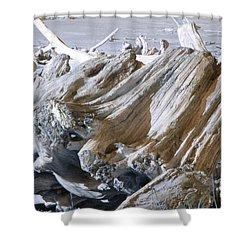 Ocean Driftwood Landscape Art Prints Coastal Views Shower Curtain by Baslee Troutman
