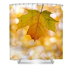 October Maple Leaf Shower Curtain by Angie Rea