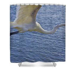 Off To The Nest Shower Curtain by Deborah Benoit