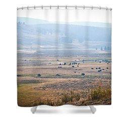 Oh Home On The Range Shower Curtain by Cheryl Baxter