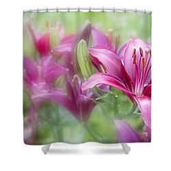 Oh So Pink Shower Curtain by Toni Hopper