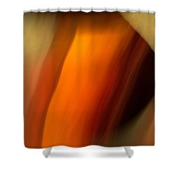 Shower Curtain featuring the mixed media O'keefe I by Terence Morrissey