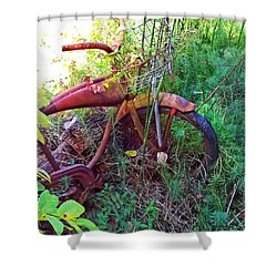 Old Bike And Weeds Shower Curtain