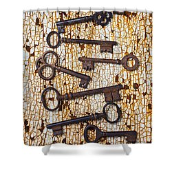 Old Keys Shower Curtain by Garry Gay