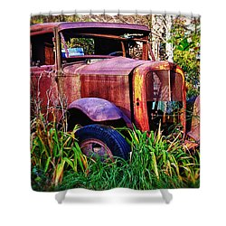 Old Rusting Truck Shower Curtain by Garry Gay