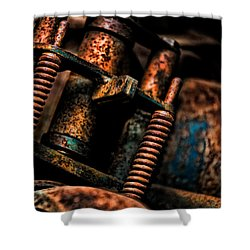 Old Springs Shower Curtain by Christopher Holmes