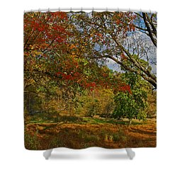 Old Tree And Foliage Shower Curtain
