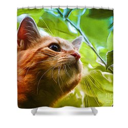 On A Discovery Tour Shower Curtain by Jutta Maria Pusl